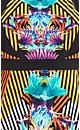 Carnivale Peplum Top