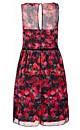 Miss Polite Dress